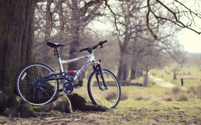 Our Favorite Knoxville Biking Trails